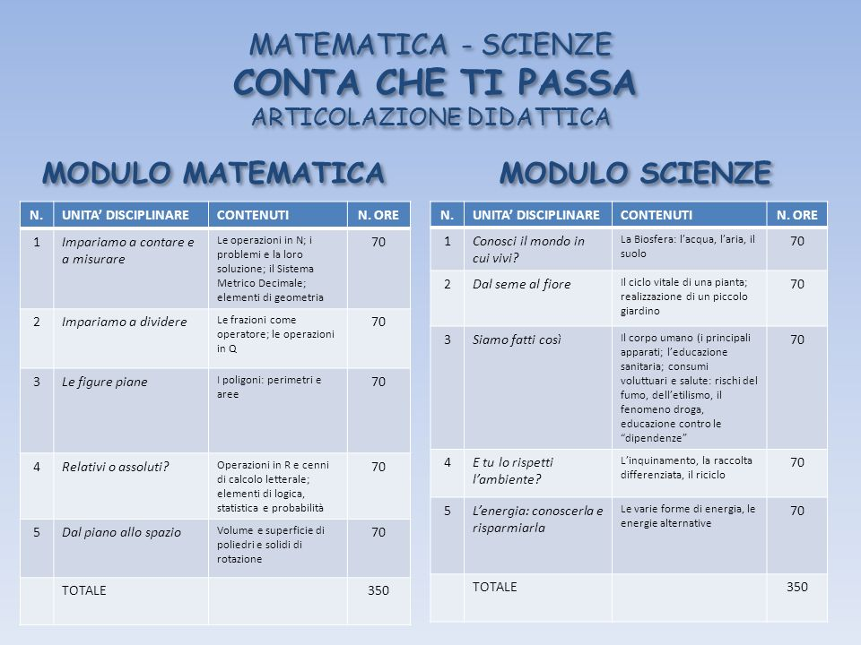 MATEMATICA - SCIENZE CONTA CHE TI PASSA ARTICOLAZIONE DIDATTICA
