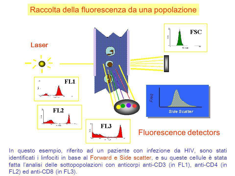 Raccolta della fluorescenza da una popolazione