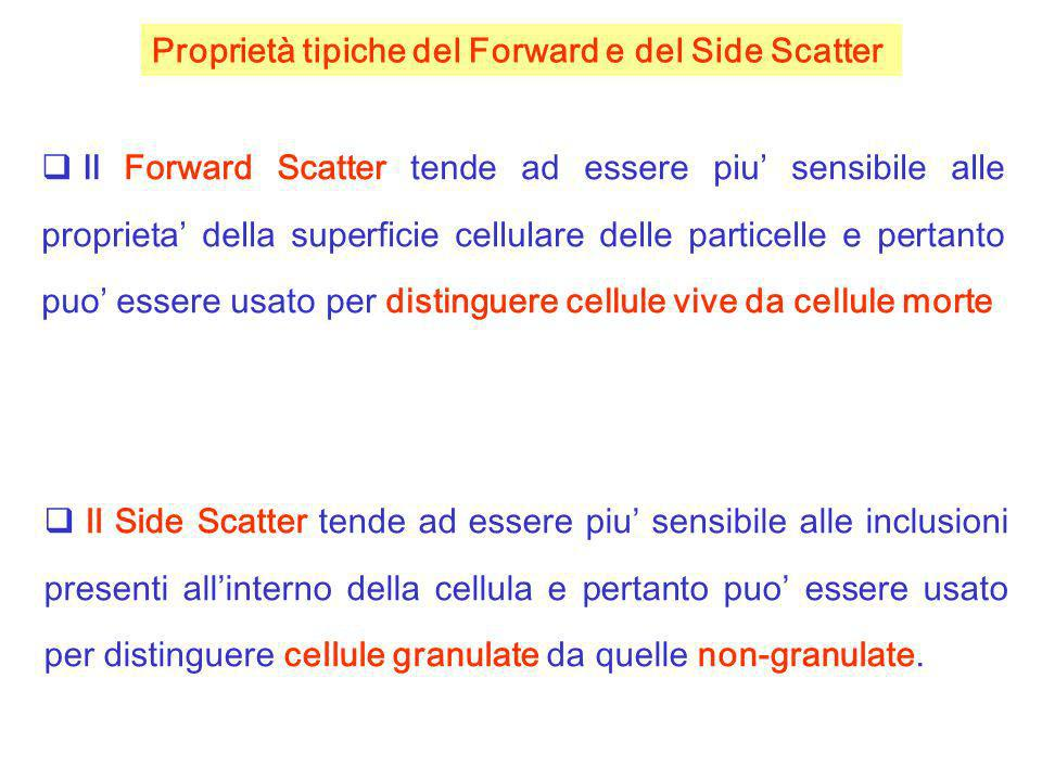 Proprietà tipiche del Forward e del Side Scatter
