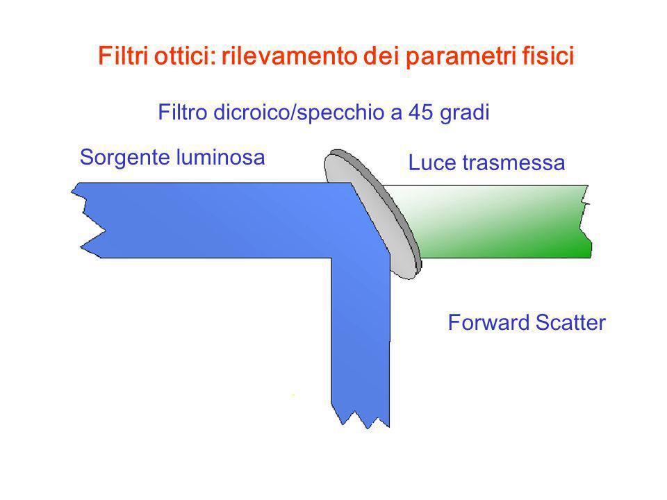 Filtri ottici: rilevamento dei parametri fisici