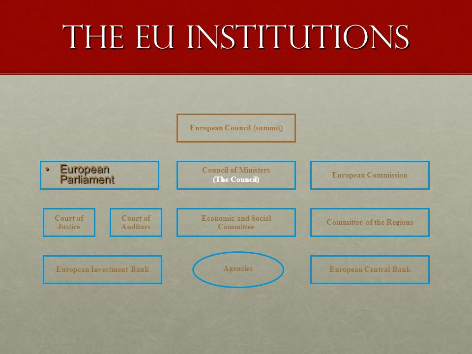 THE EU INSTITUTIONS European Parliament European Council (summit)