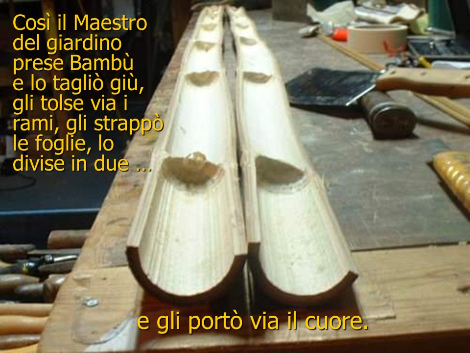 e gli portò via il cuore. Così il Maestro del giardino prese Bambù