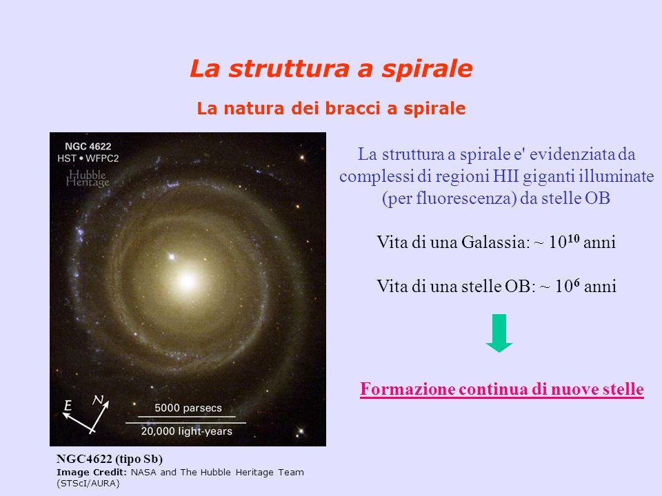 La struttura a spirale La natura dei bracci a spirale