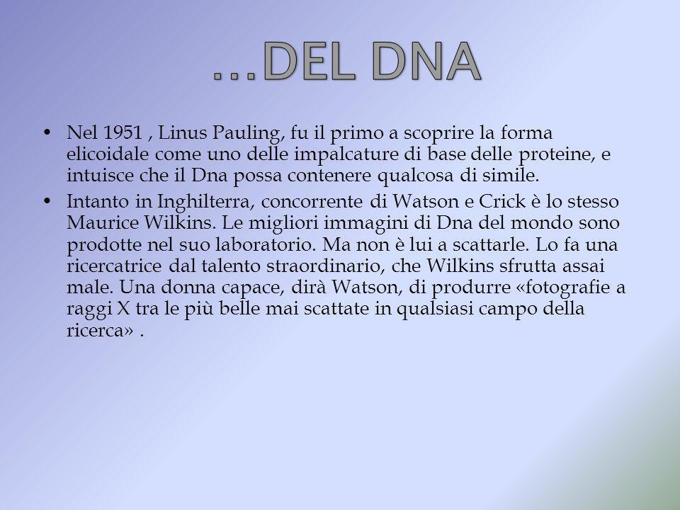 …DEL DNA