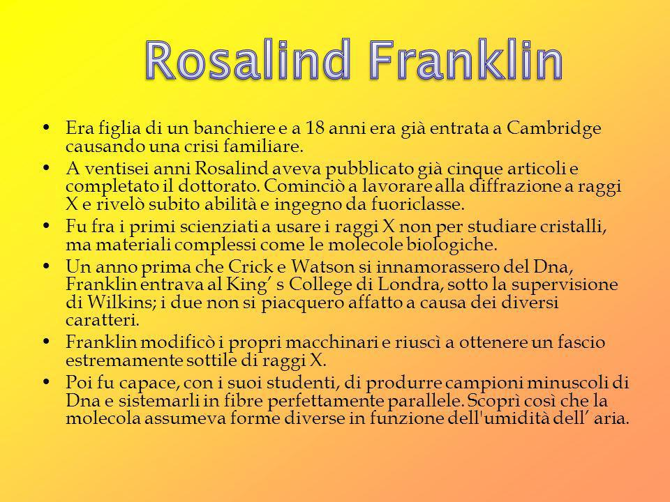 Rosalind Franklin Era figlia di un banchiere e a 18 anni era già entrata a Cambridge causando una crisi familiare.