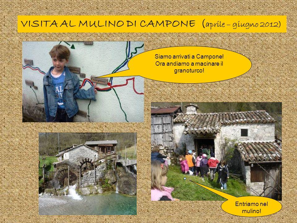 VISITA AL MULINO DI CAMPONE (aprile – giugno 2012)