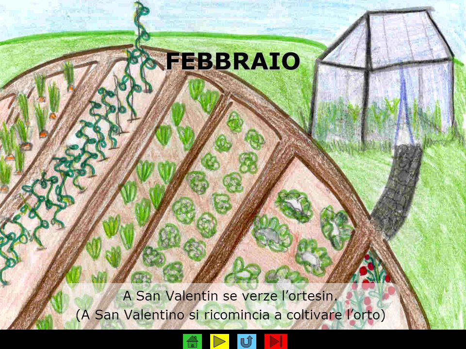FEBBRAIO A San Valentin se verze l'ortesin.