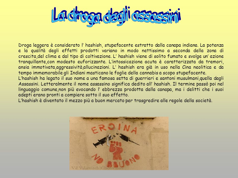 La droga degli assassini