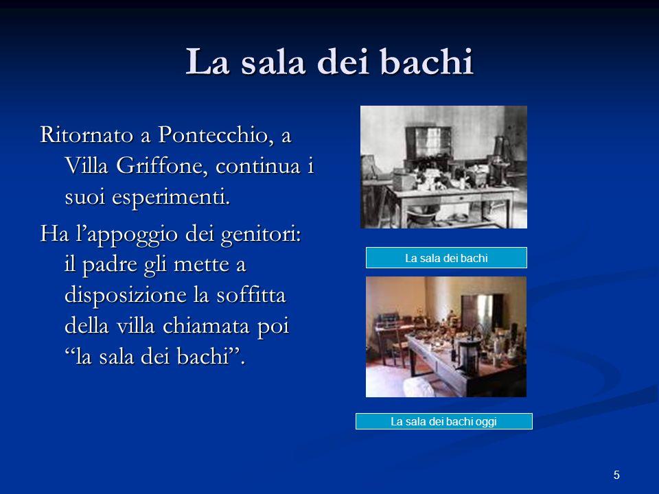 La sala dei bachiRitornato a Pontecchio, a Villa Griffone, continua i suoi esperimenti.