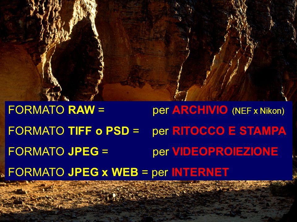 FORMATO RAW = per ARCHIVIO (NEF x Nikon)