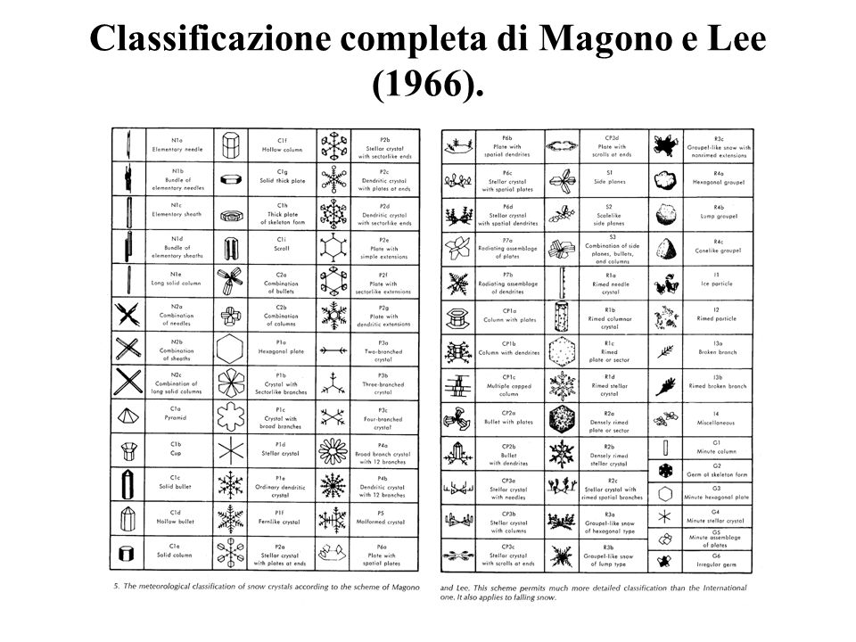 Classificazione completa di Magono e Lee (1966).