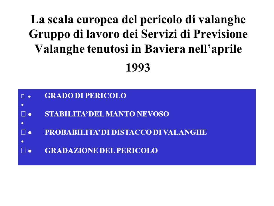 La scala europea del pericolo di valanghe Gruppo di lavoro dei Servizi di Previsione Valanghe tenutosi in Baviera nell'aprile 1993