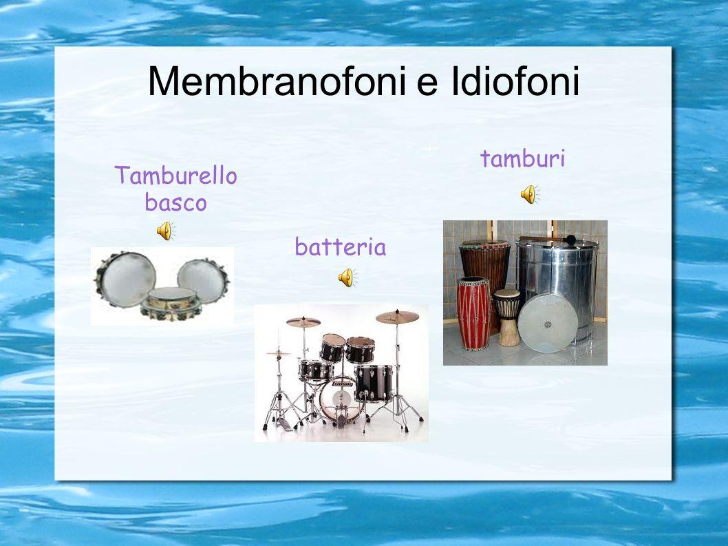 Membranofoni e Idiofoni