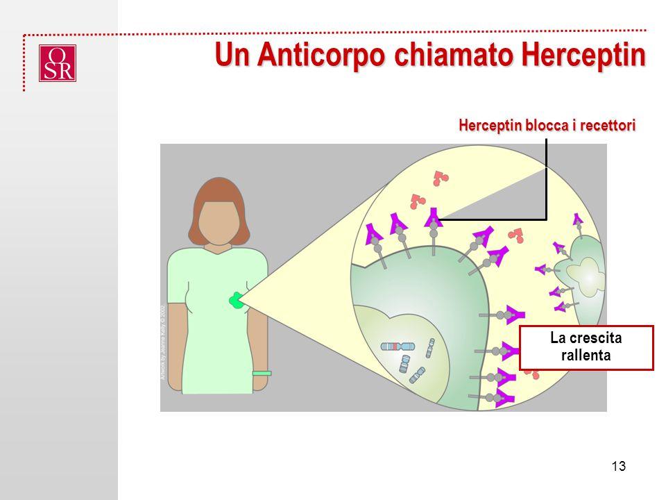Un Anticorpo chiamato Herceptin