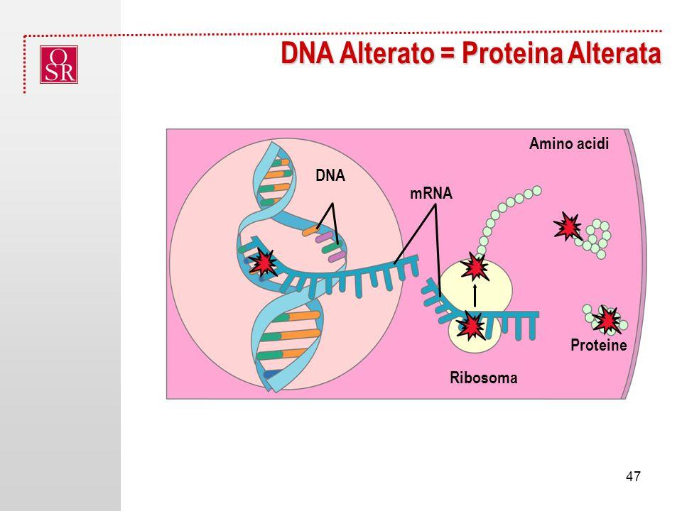 DNA Alterato = Proteina Alterata