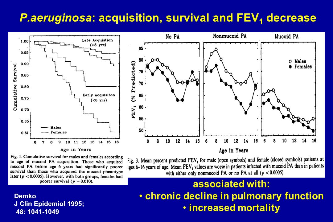 P.aeruginosa: acquisition, survival and FEV1 decrease