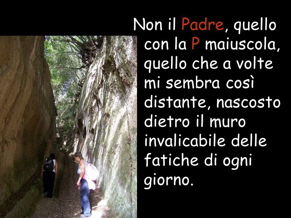Non il Padre, quello con la P maiuscola, quello che a volte mi sembra così distante, nascosto dietro il muro invalicabile delle fatiche di ogni giorno.