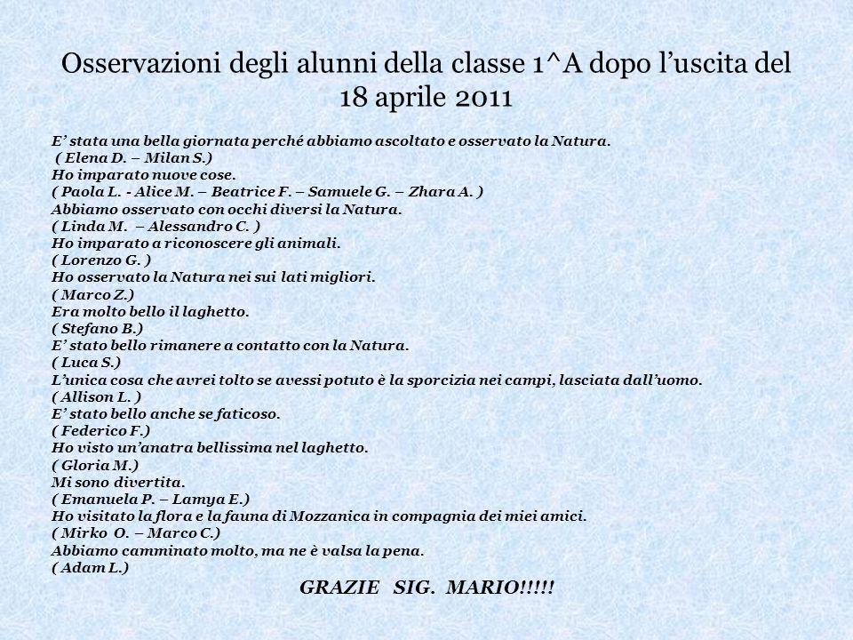 Osservazioni degli alunni della classe 1^A dopo l'uscita del 18 aprile 2011