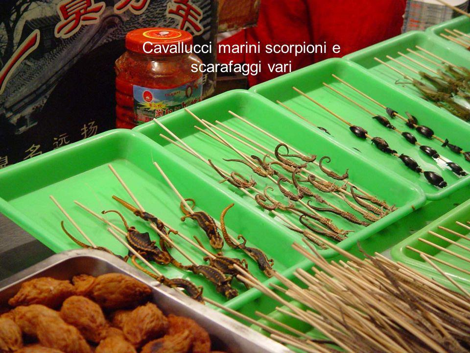 Cavallucci marini scorpioni e scarafaggi vari