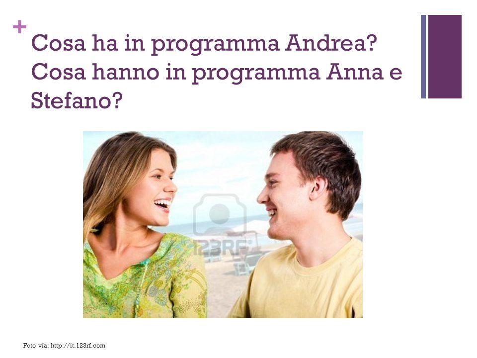 Cosa ha in programma Andrea Cosa hanno in programma Anna e Stefano