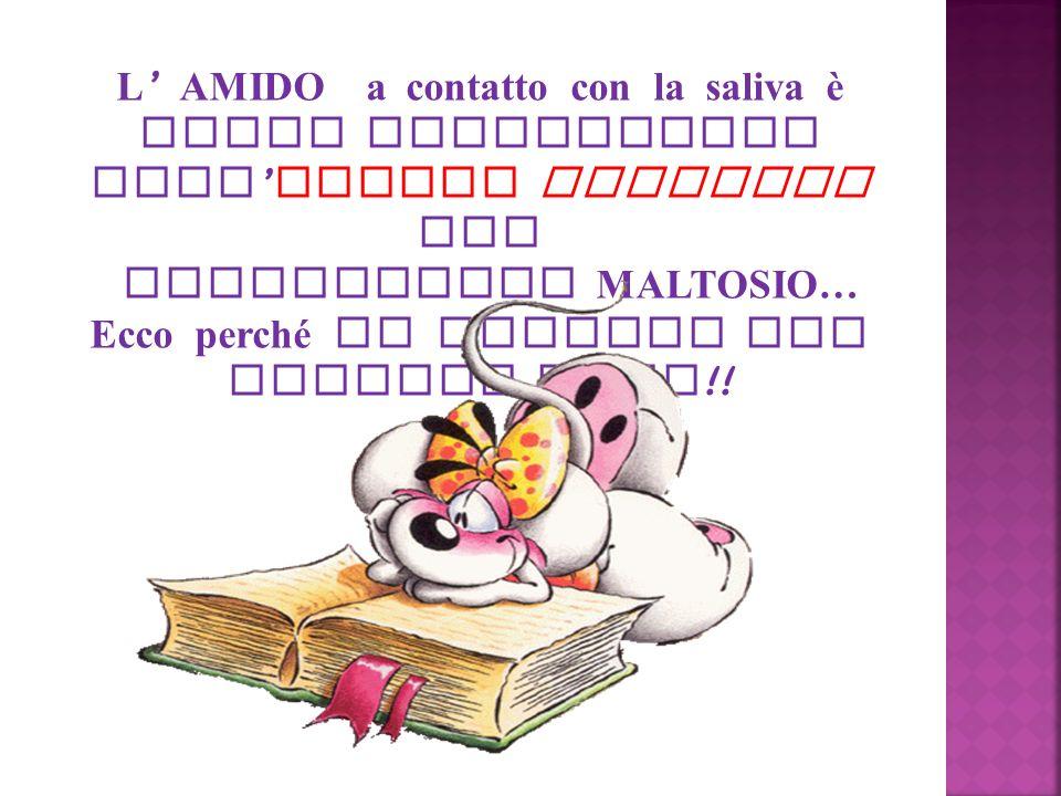 disaccaride MALTOSIO… Ecco perché la mollica non diventa nera!!