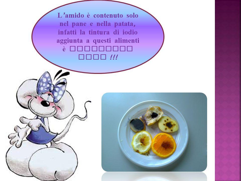 L'amido è contenuto solo nel pane e nella patata, infatti la tintura di iodio aggiunta a questi alimenti è diventata nera !!!