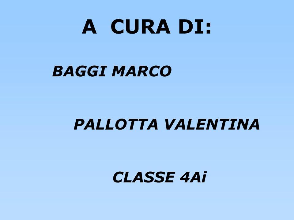 A CURA DI: BAGGI MARCO PALLOTTA VALENTINA CLASSE 4Ai