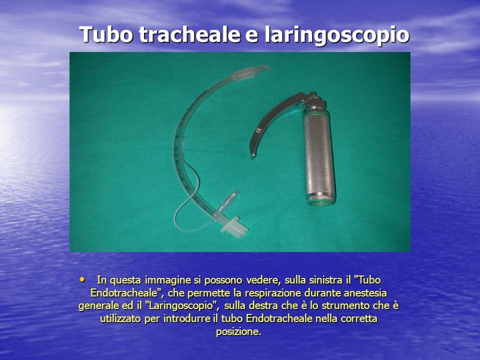 Tubo tracheale e laringoscopio