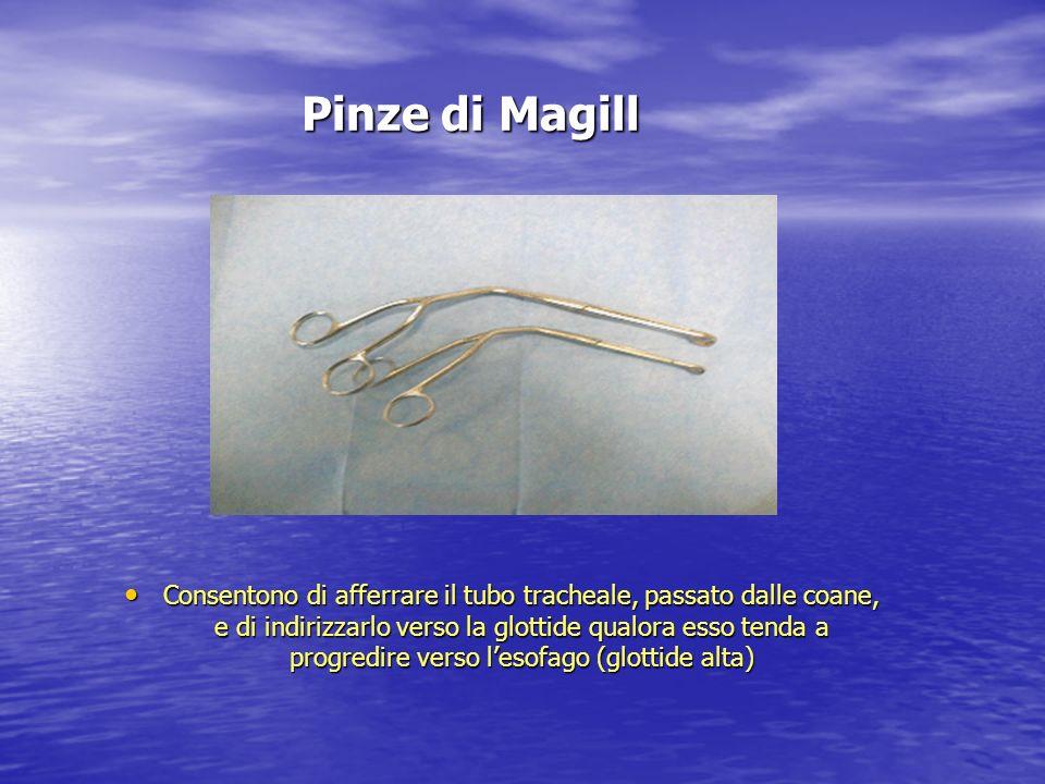 Pinze di Magill