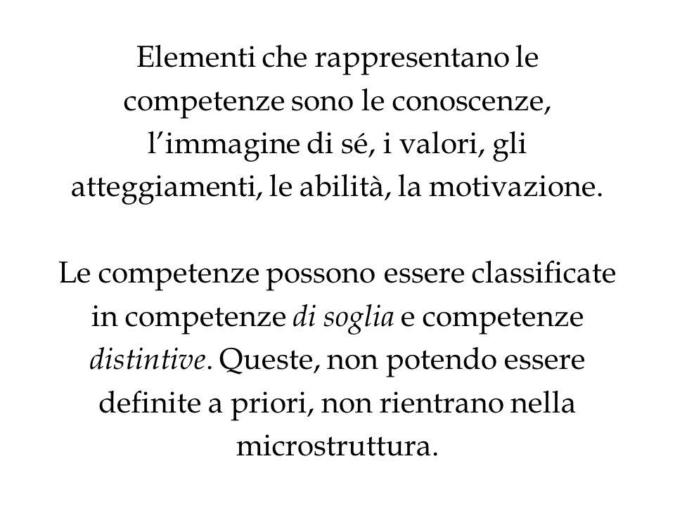 Elementi che rappresentano le competenze sono le conoscenze, l'immagine di sé, i valori, gli atteggiamenti, le abilità, la motivazione.