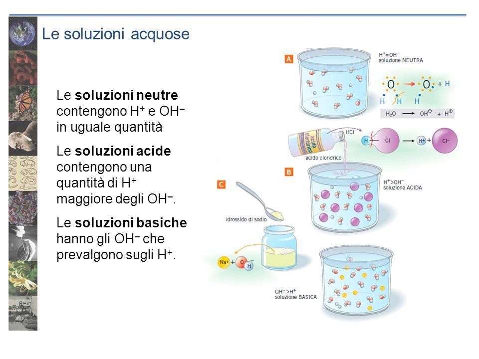Le soluzioni acquose Le soluzioni neutre contengono H+ e OH– in uguale quantità.