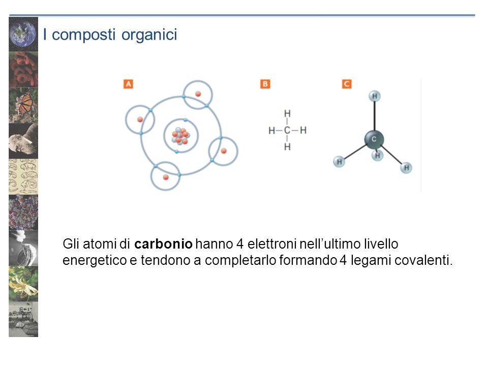 I composti organici Gli atomi di carbonio hanno 4 elettroni nell'ultimo livello energetico e tendono a completarlo formando 4 legami covalenti.