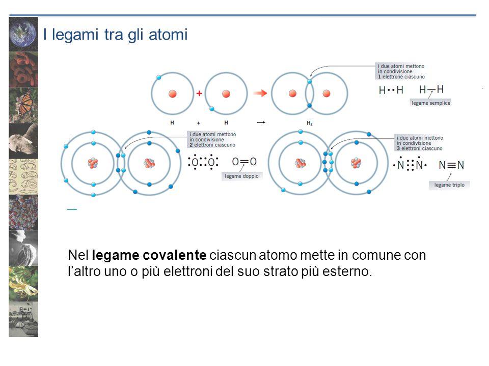 I legami tra gli atomi Nel legame covalente ciascun atomo mette in comune con l'altro uno o più elettroni del suo strato più esterno.