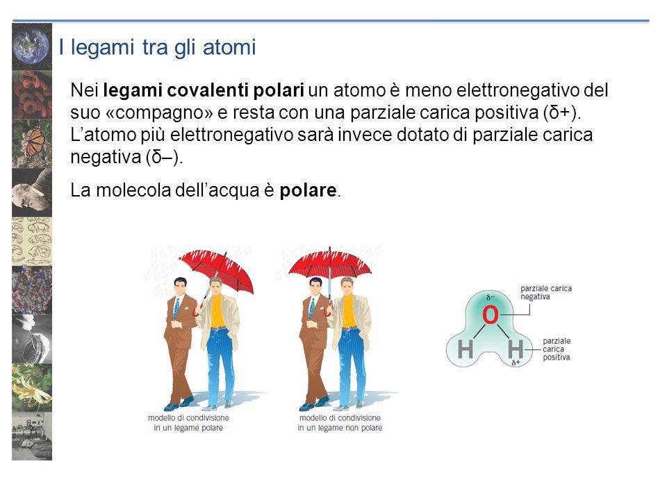 I legami tra gli atomi