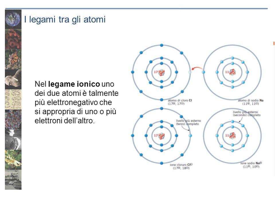 I legami tra gli atomi Nel legame ionico uno dei due atomi è talmente più elettronegativo che si appropria di uno o più elettroni dell'altro.