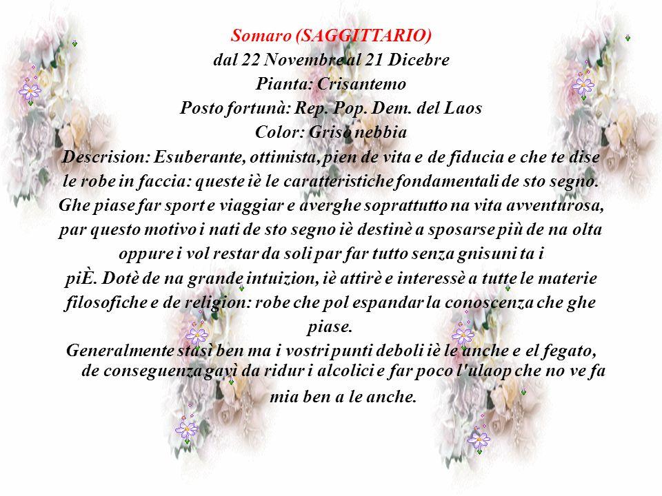 dal 22 Novembre al 21 Dicebre Pianta: Crisantemo