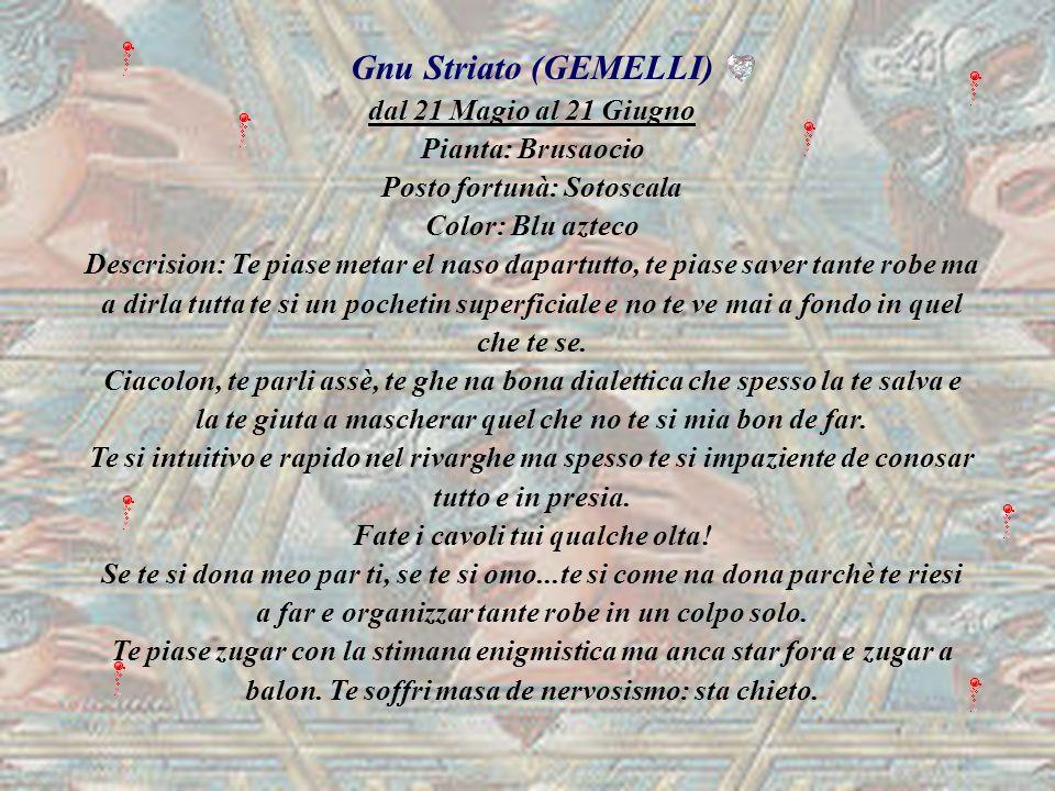 Gnu Striato (GEMELLI) dal 21 Magio al 21 Giugno Pianta: Brusaocio