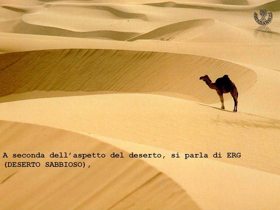 A seconda dell'aspetto del deserto, si parla di ERG (DESERTO SABBIOSO),