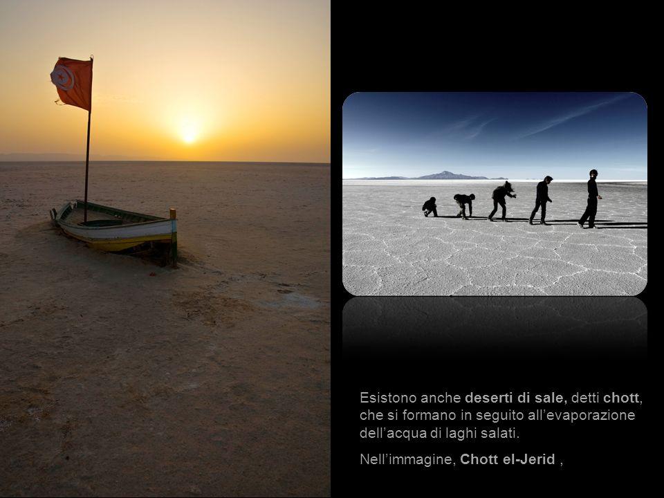 Esistono anche deserti di sale, detti chott, che si formano in seguito all'evaporazione dell'acqua di laghi salati.
