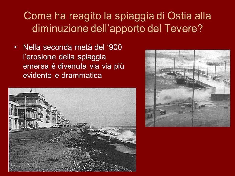 Come ha reagito la spiaggia di Ostia alla diminuzione dell'apporto del Tevere