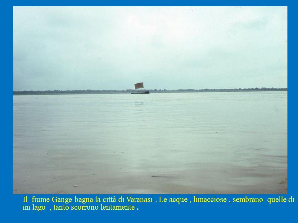 Il fiume Gange bagna la città di Varanasi
