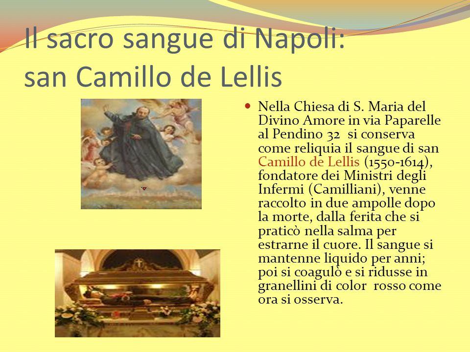 Il sacro sangue di Napoli: san Camillo de Lellis