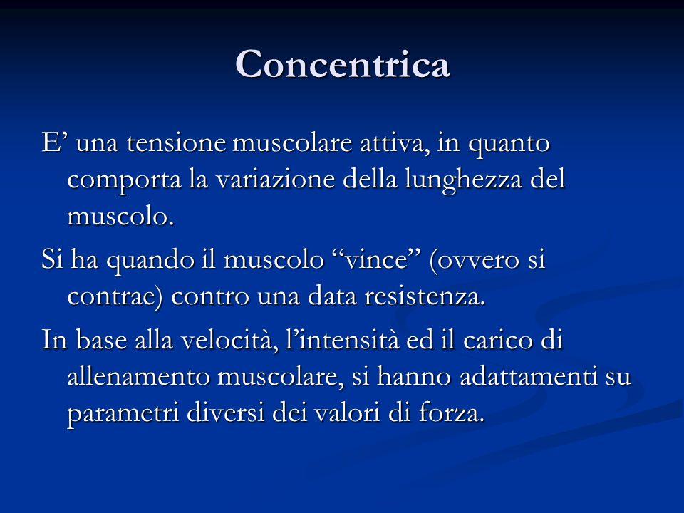 Concentrica E' una tensione muscolare attiva, in quanto comporta la variazione della lunghezza del muscolo.