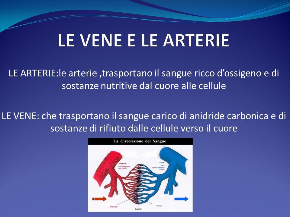 LE VENE E LE ARTERIE LE ARTERIE:le arterie ,trasportano il sangue ricco d'ossigeno e di sostanze nutritive dal cuore alle cellule.