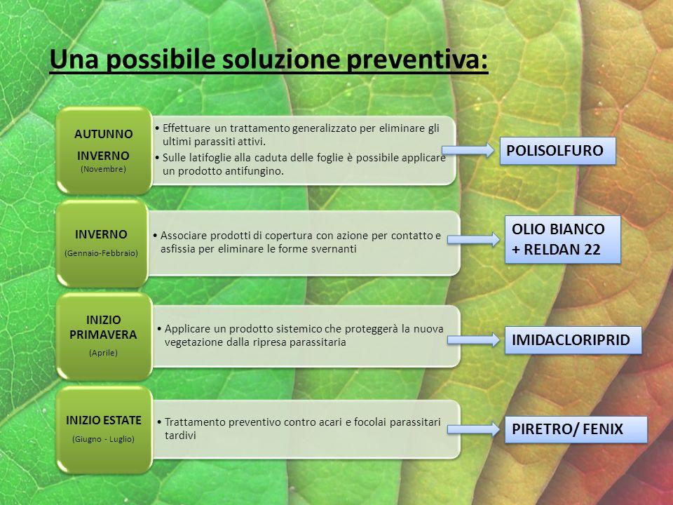 Una possibile soluzione preventiva:
