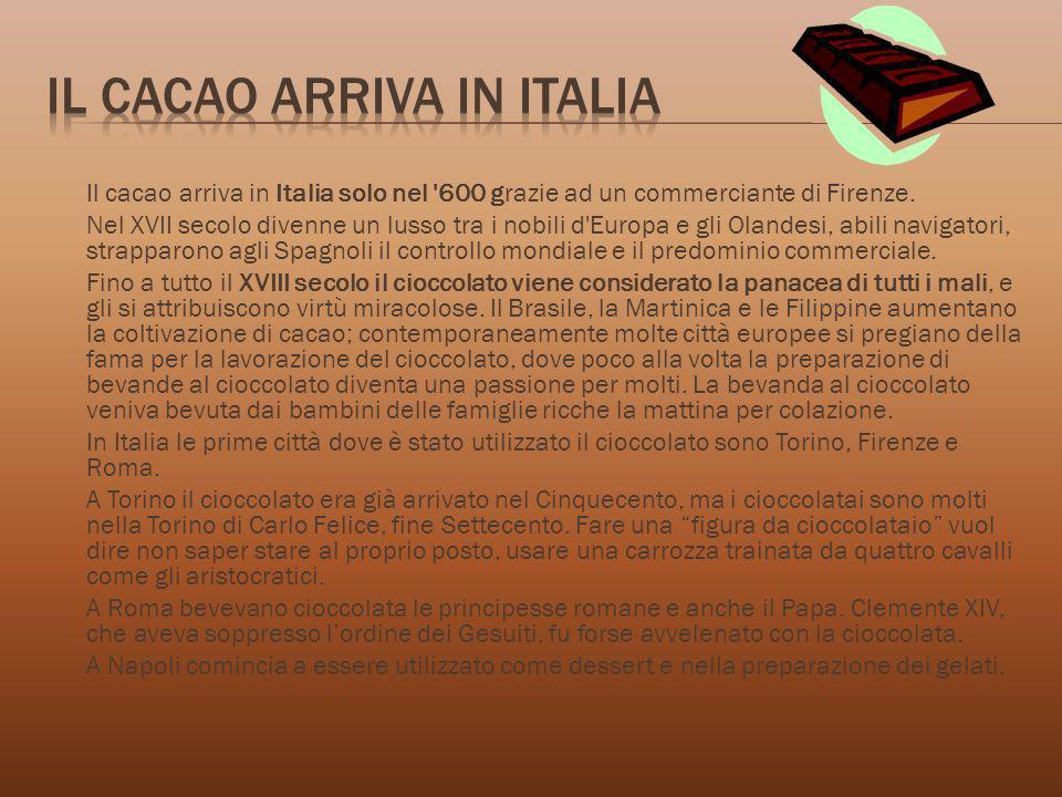 Il cacao arriva in italia