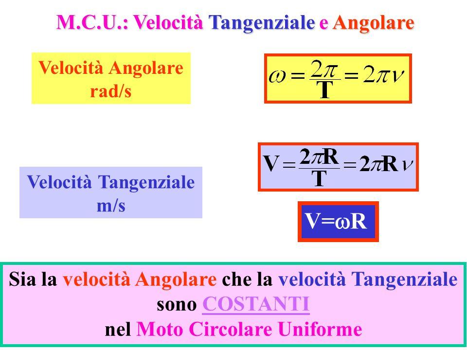 V=wR M.C.U.: Velocità Tangenziale e Angolare