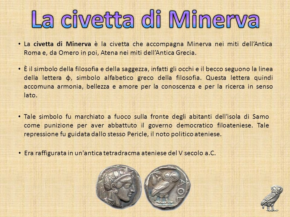 La civetta di Minerva
