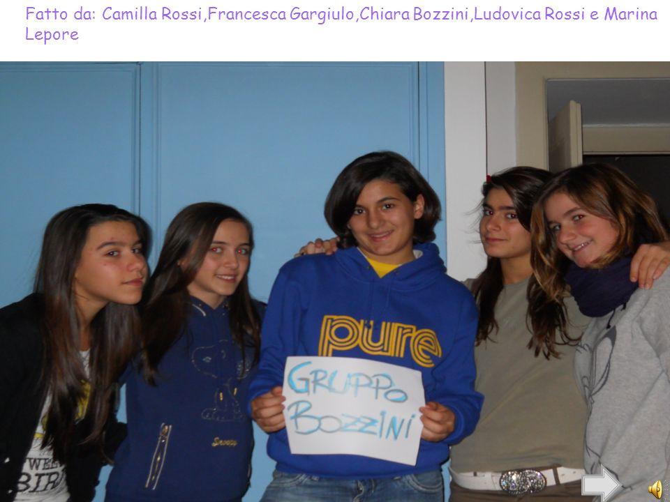 Fatto da: Camilla Rossi,Francesca Gargiulo,Chiara Bozzini,Ludovica Rossi e Marina Lepore