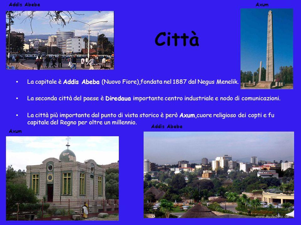 Addis Abeba Axum. Città. La capitale è Addis Abeba (Nuovo Fiore),fondata nel 1887 dal Negus Menelik.